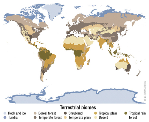 Terrestrial biomess visual dictionary map terrestrial biomes gumiabroncs Choice Image