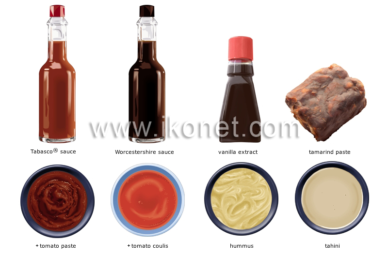 Food Ingredients Condiments Sauces Manufacturer Mail: Food And Kitchen > Food > Condiments Image