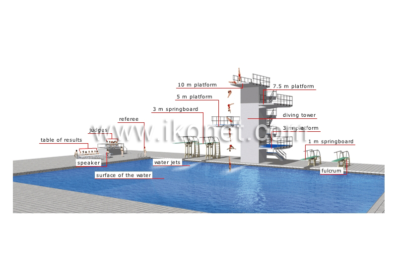 Sports and games aquatic and nautical sports diving for Dimension piscine olympique