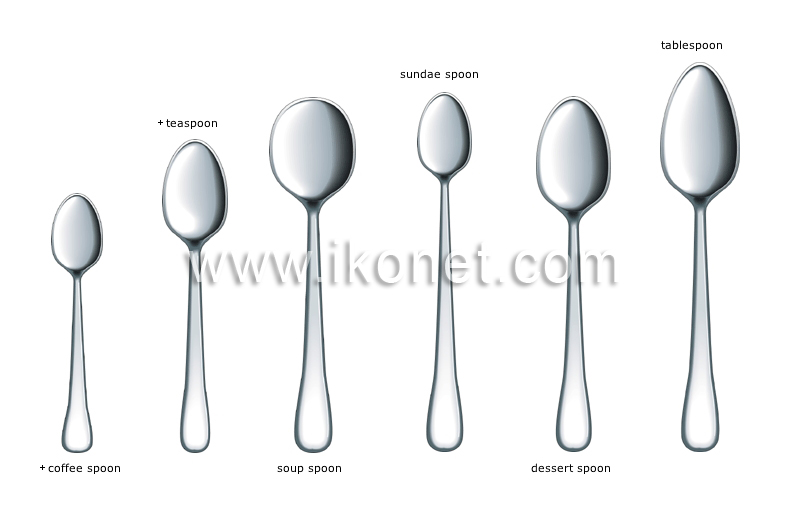 Food And Kitchen Gt Kitchen Gt Silverware Gt Examples Of