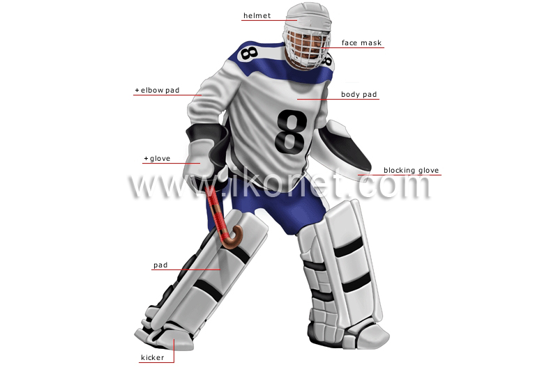 Sports And Games Ball Sports Field Hockey Goalkeeper Image