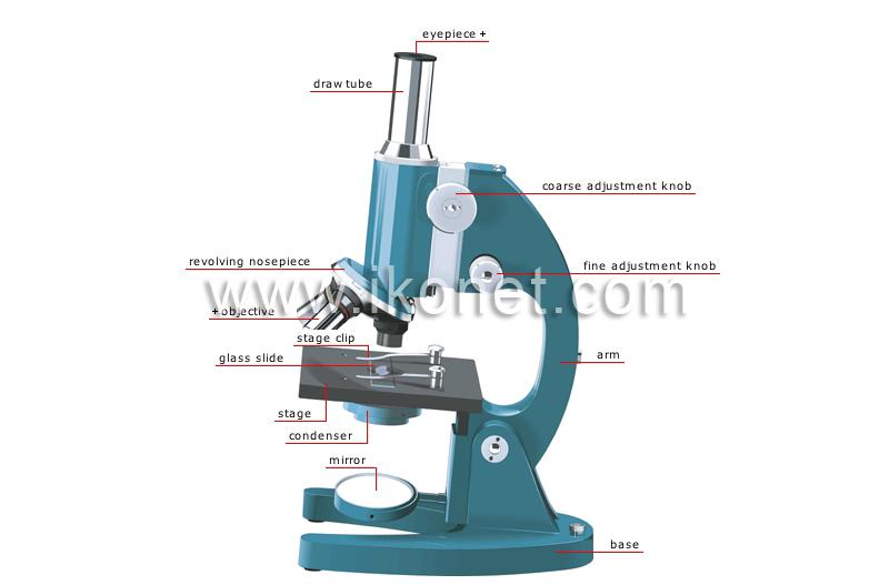 Science u003e physics: optics u003e magnifying glass and microscopes