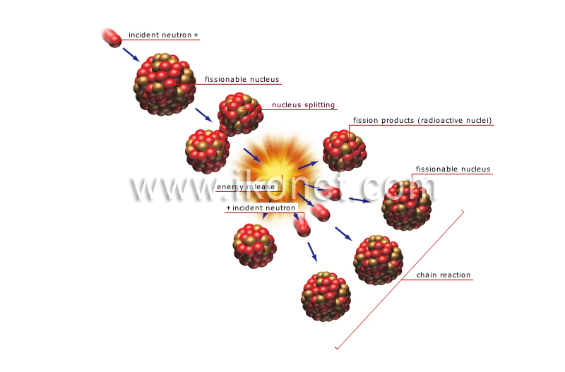 science chemistry matter nuclear fission image visual dictionary