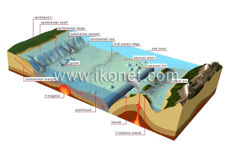 Ocean Floor Image