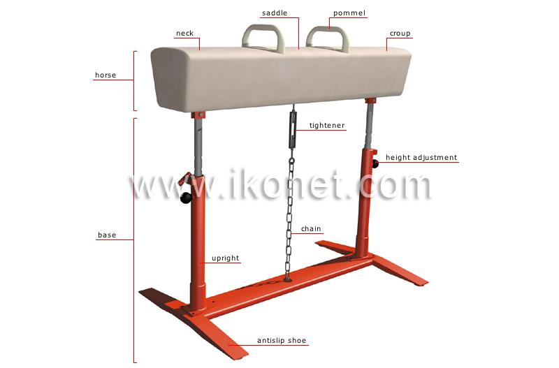 sports and games gymnastics gymnastics pommel horse image