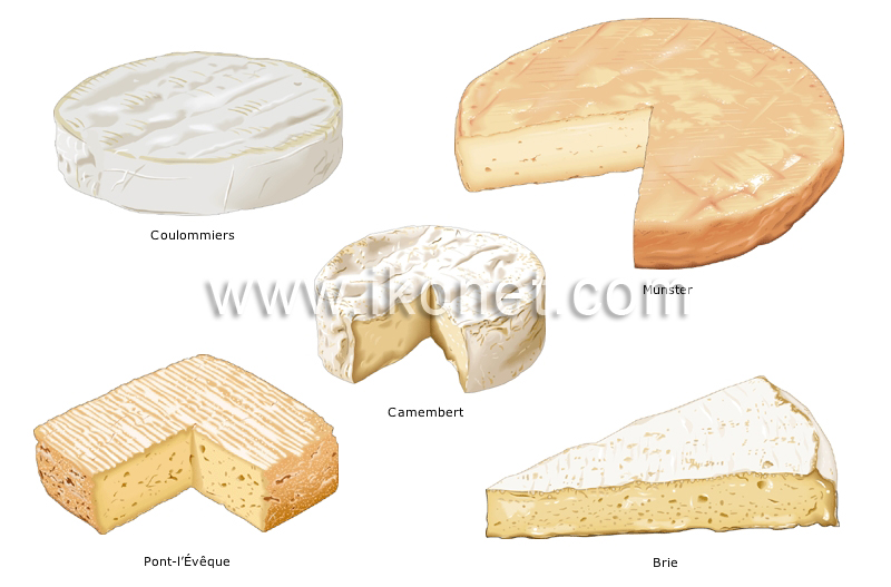 Food And Kitchen > Food > Dairy Products > Soft Cheeses ...
