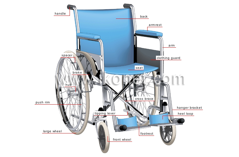 Society Gt Health Gt Wheelchair Image Visual Dictionary