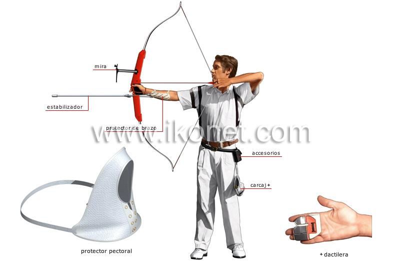 9061f8690d742 deportes y juegos   deportes de precisión y puntería   tiro con arco ...