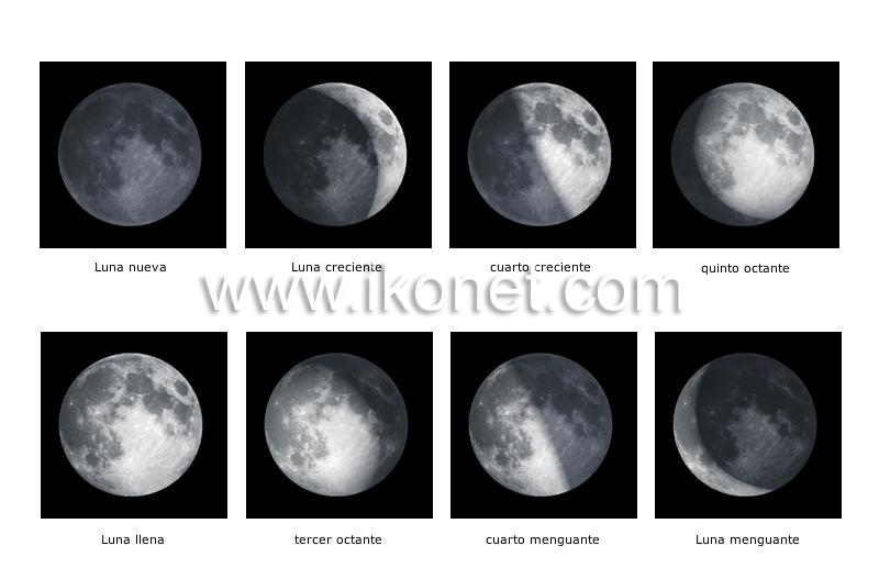 fases de la Luna image