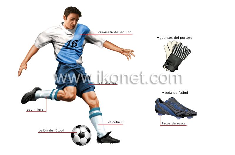 futbolista image