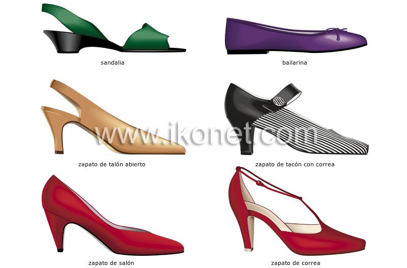 d9faeafc0d6b vestido > calzado > zapatos de mujer imagen - Diccionario Visual