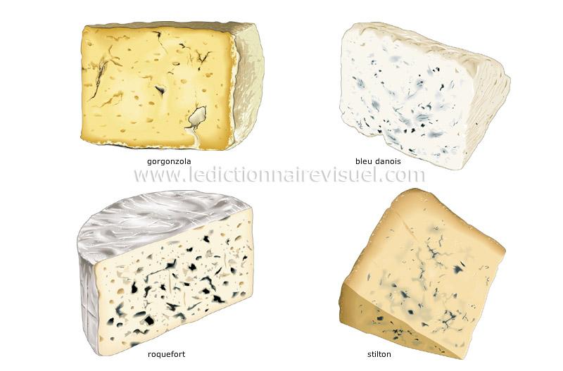 fromages à pâte persillée - Le Dictionnaire Visuel