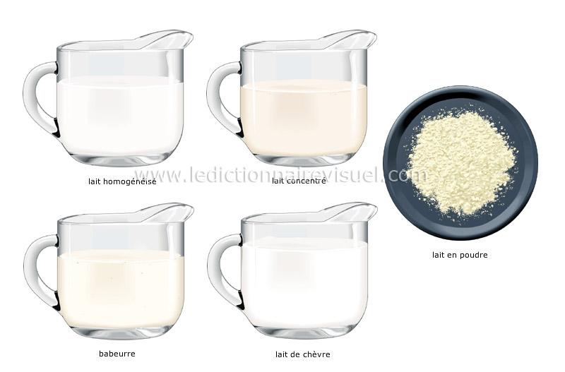 lait - Le Dictionnaire Visuel