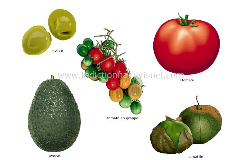 légumes fruits - Le Dictionnaire Visuel