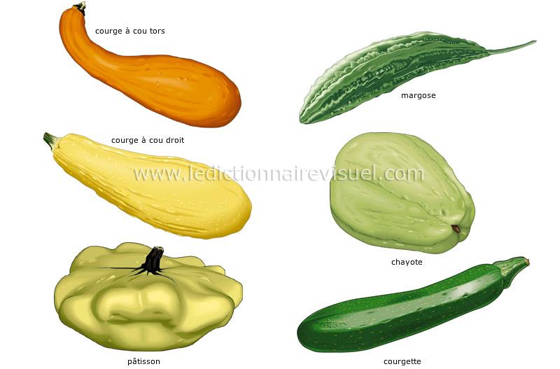 Populaire alimentation et cuisine > alimentation > légumes > légumes fruits  MZ93