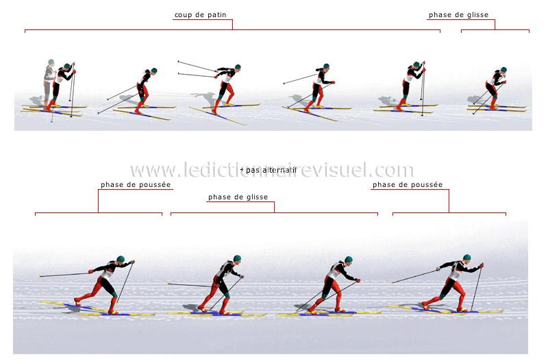 sports et jeux sports d hiver ski de fond pas de patineur image dictionnaire visuel. Black Bedroom Furniture Sets. Home Design Ideas