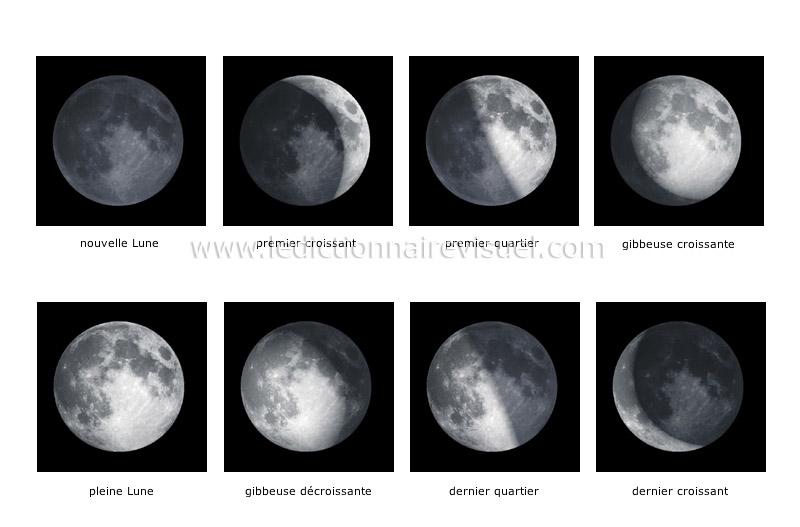 les quartiers de lune