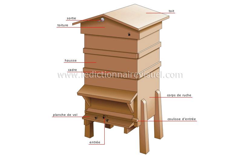 r gne animal insectes et arachnides abeille ruche image dictionnaire visuel. Black Bedroom Furniture Sets. Home Design Ideas