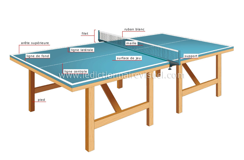 Sports et jeux sports de raquette tennis de table for Pied de table en anglais