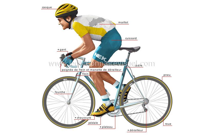 Cycliste Image sports et jeux > cyclisme > cyclisme sur route > vélo de course et